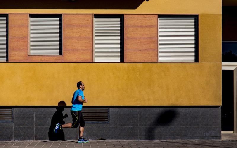 Marathon für den Kopf > Faktwert-Artikel 800x500